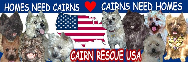 Cairn Rescue USA
